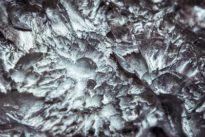 Iris Van Herpen Wilderness 2 - All Lambs