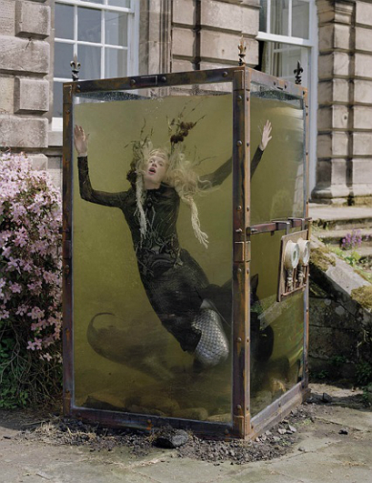 Tim walker 11 - All Lambs