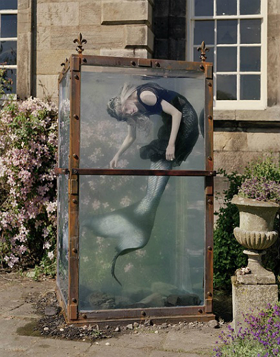 Tim walker 15 - All Lambs
