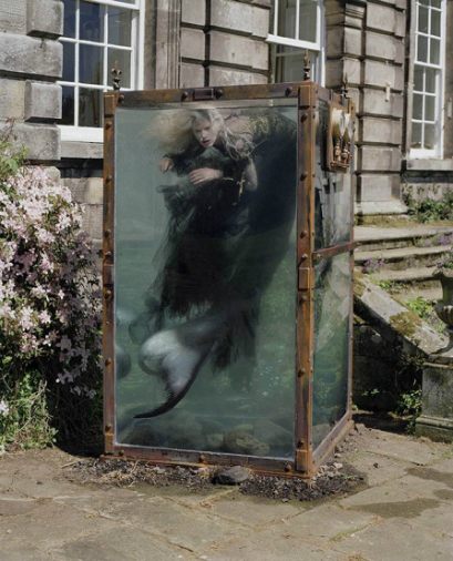 Tim walker 2 - All Lambs